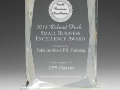2018 Orland Park Small Business Excellence Award - Take Action CPR Training